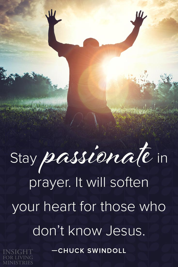Stay passionate in prayer. It will soften your heart for those who don