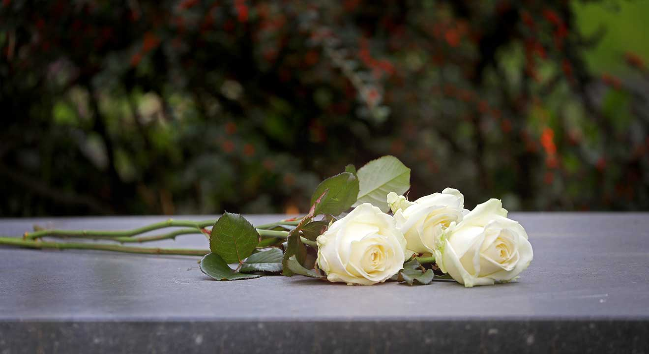image of 3 white roses for resurrection article