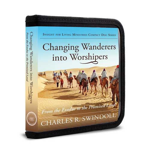 Changing Wanderers into Worshipers: From the Exodus to the Promised Land