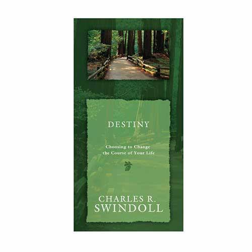 Destiny: Choosing to Change the Course of Your Life