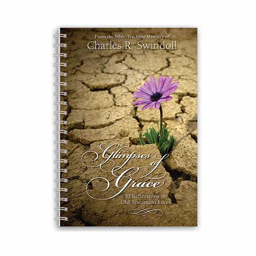 Glimpses of Grace: 30 Reflections on Old Testament Lives