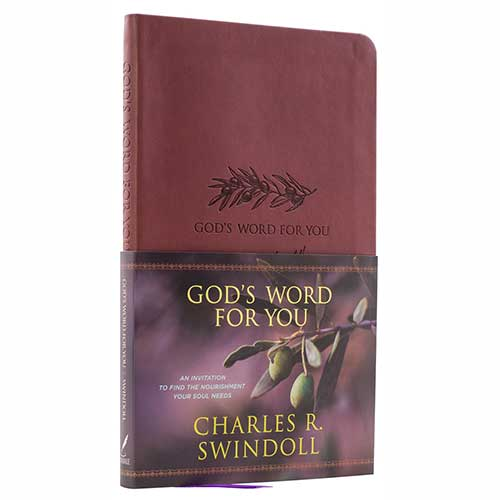 God's Word for You: An Invitation to Find the Nourishment Your Soul Needs –<em>by Charles R. Swindoll</em>