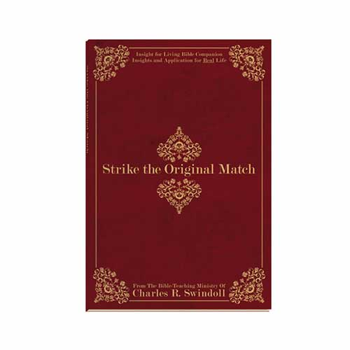 Strike the Original Match Bible Companion