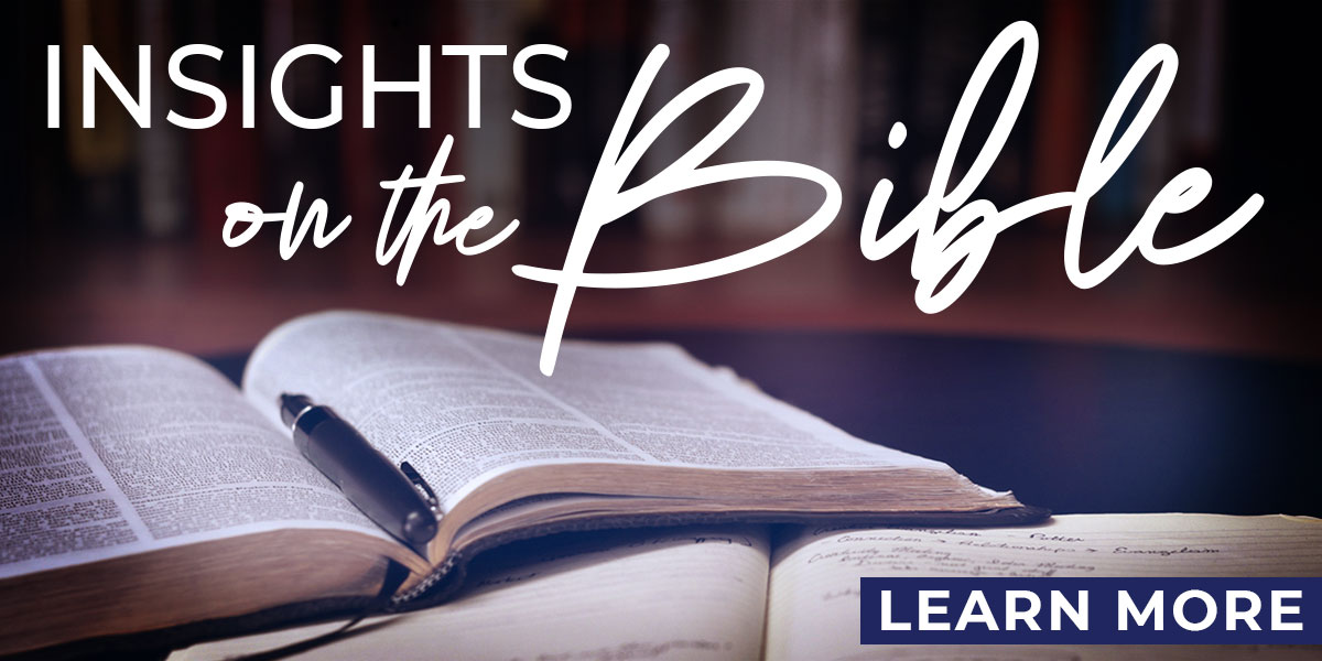 Insights on the Bible page