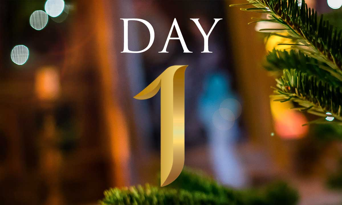 12 Days of Christmas Study: Day 1