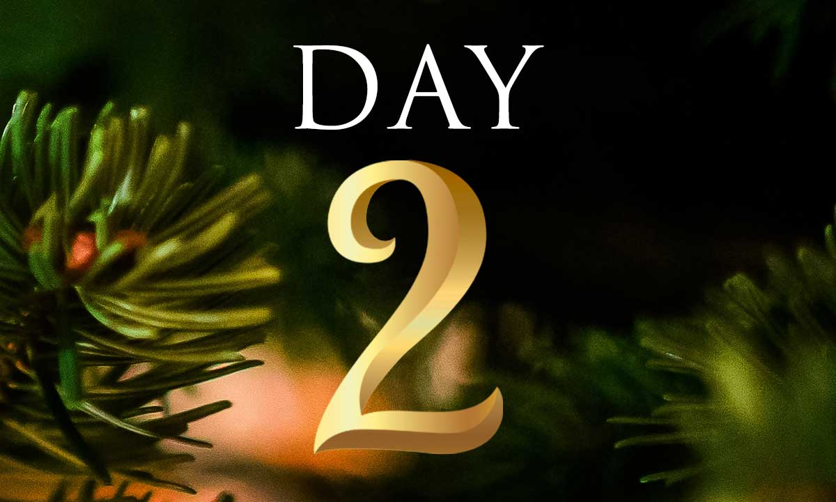 12 Days of Christmas Study: Day 2