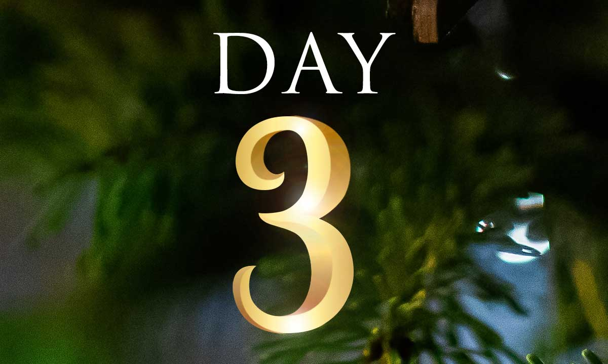 12 Days of Christmas Study: Day 3