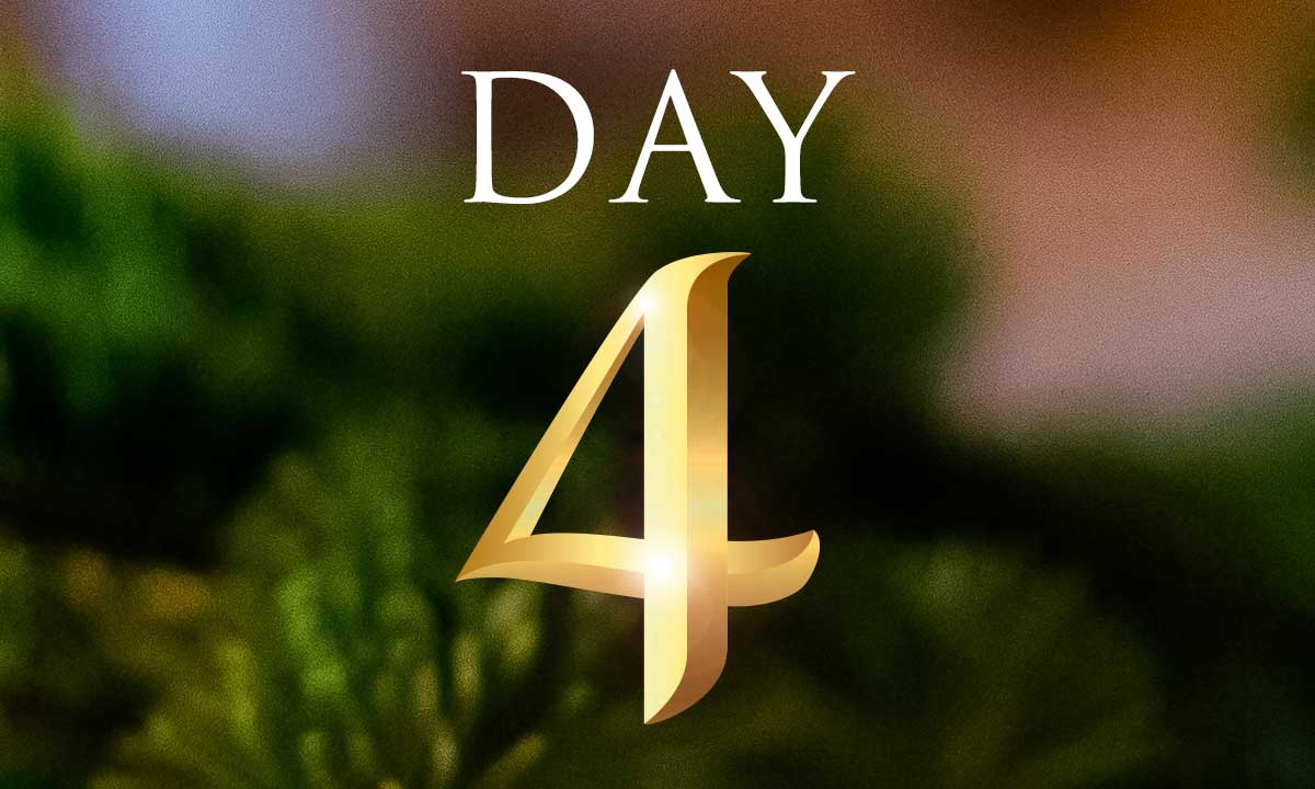 12 Days of Christmas Study: Day 4