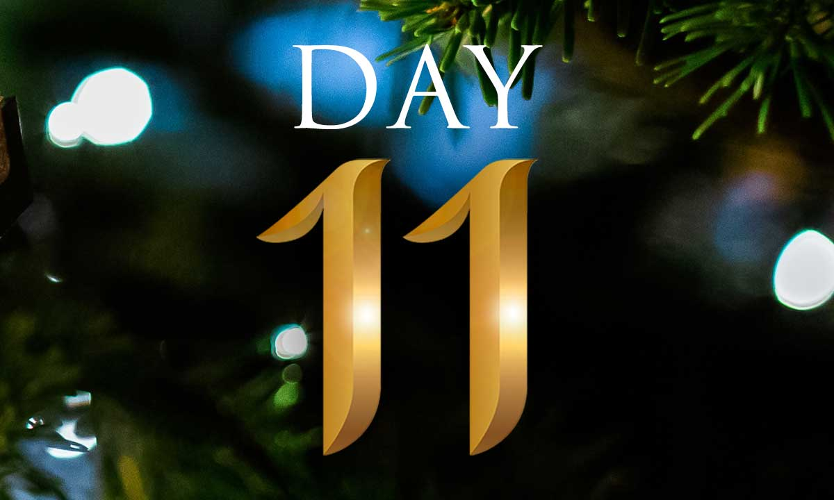 12 Days of Christmas Study: Day 11