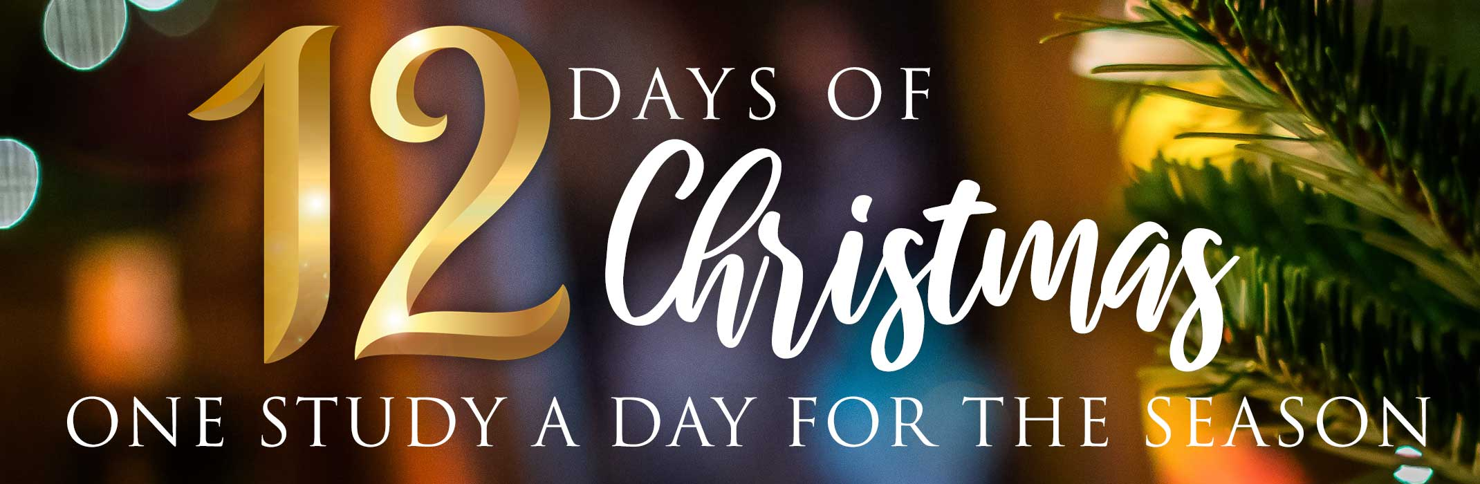 12 Days of Christmas Study