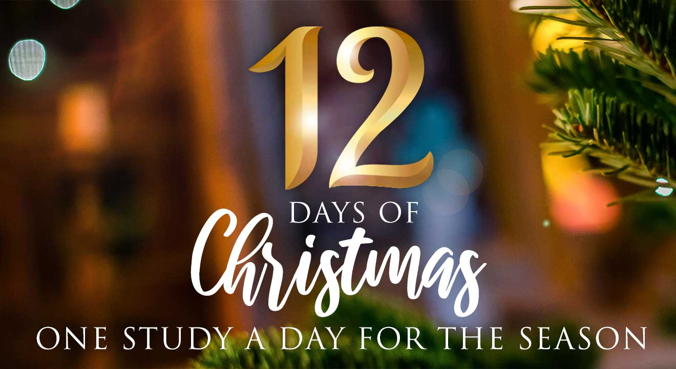 12 Days Christmas Studies