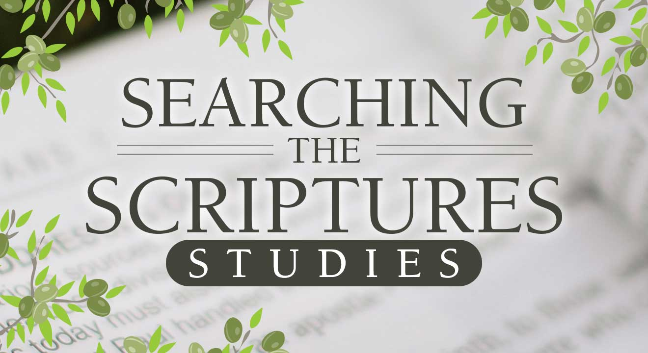 Searching the Scriptures Studies