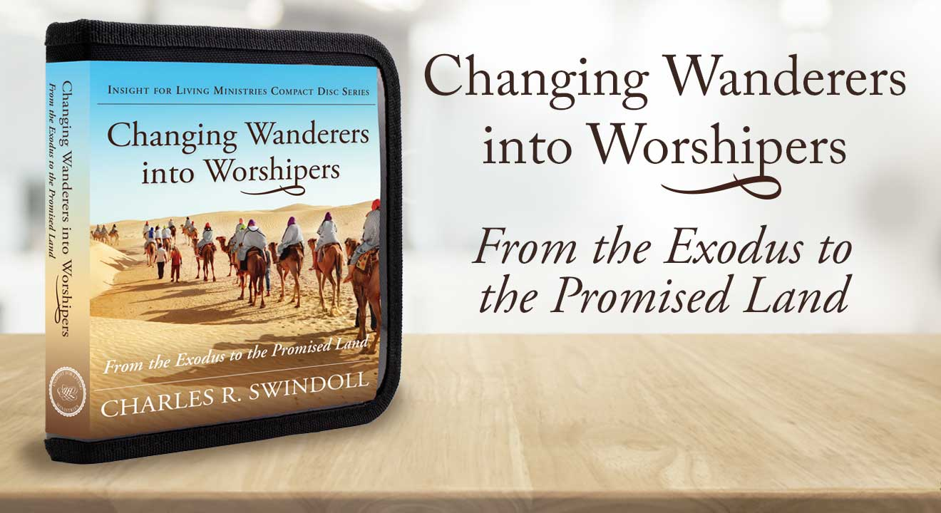 Changing Wanderers into Worshipers products