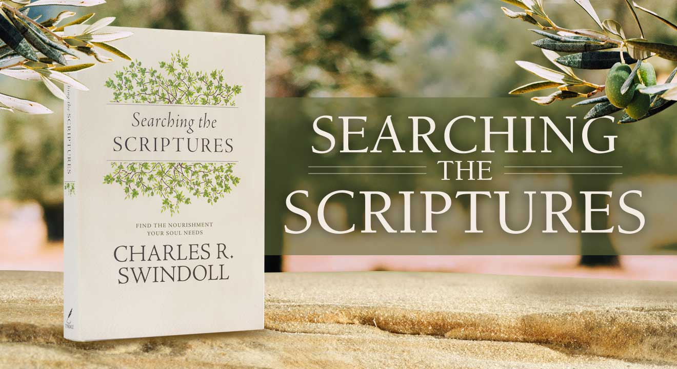 Searching the Scriptures website