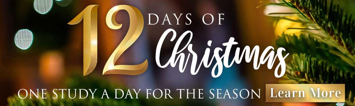 12 Days Christmas study